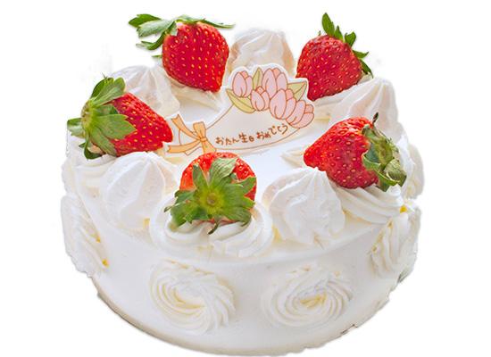 レギュラーケーキ