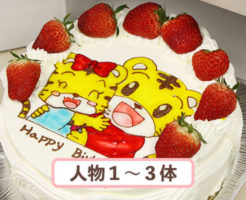 キャラクターケーキ 9号
